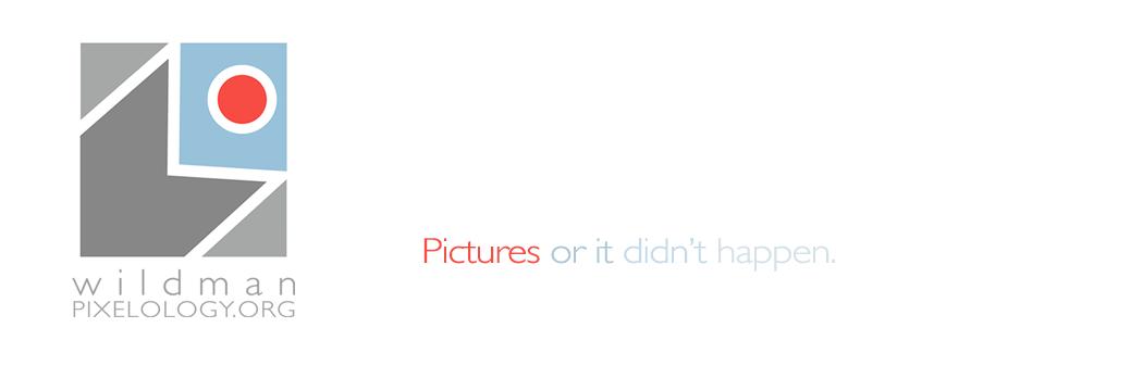 pixelology